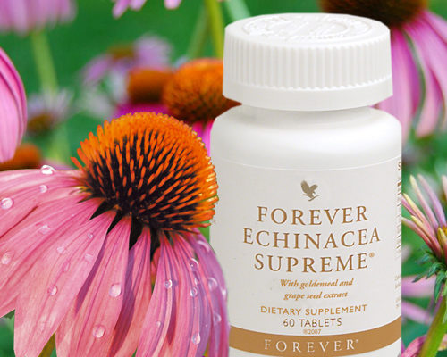 Forever Echinacea Supreme